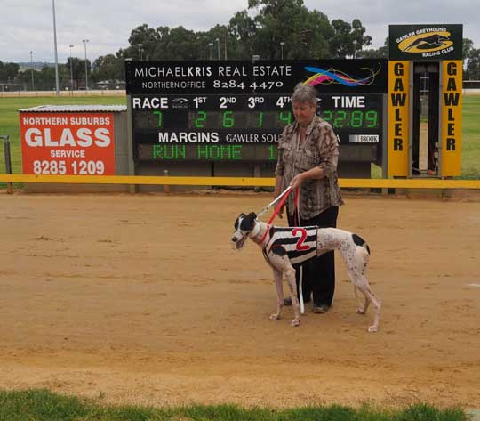 Gawler Greyhounds- Jamie's day out