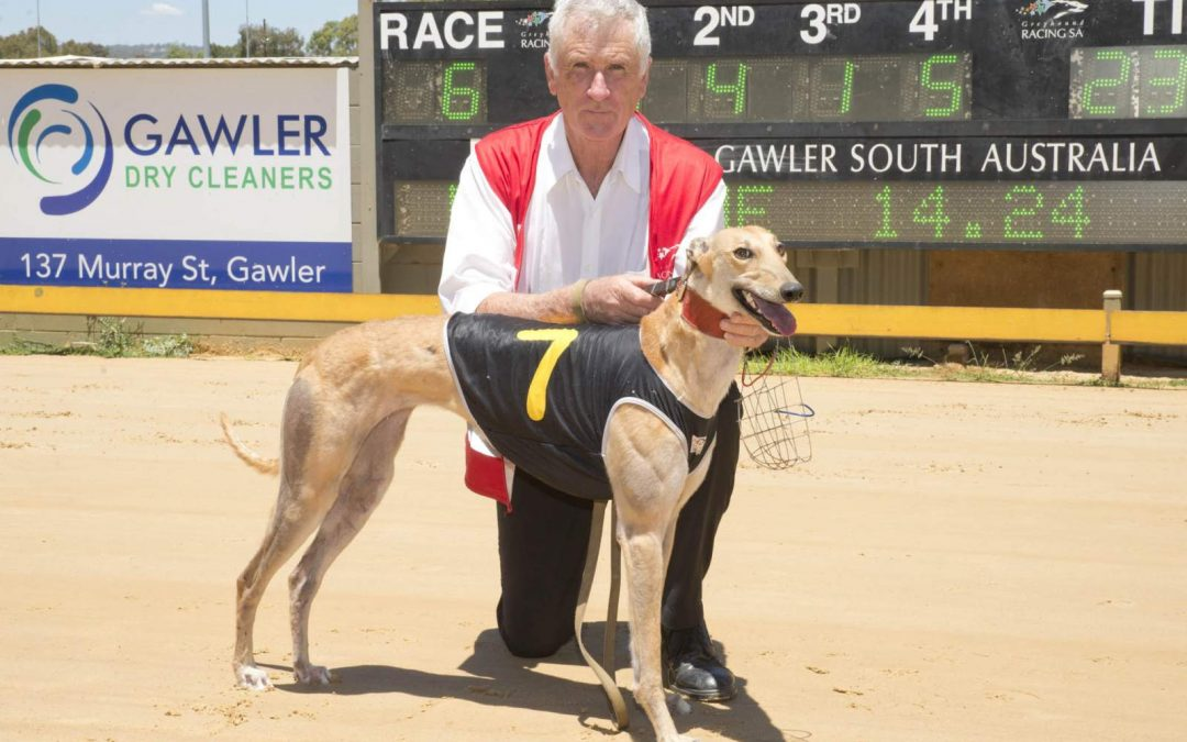A Spring in her step at Gawler